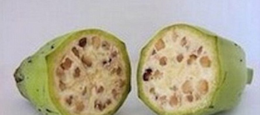 10 Pictures That Will Shut Up Your Anti-GMO Friends