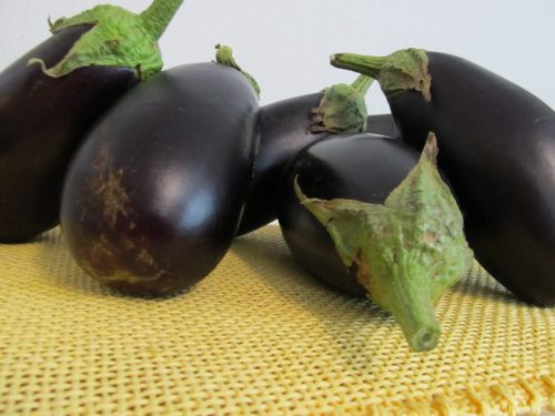 gmo-eggplant-after
