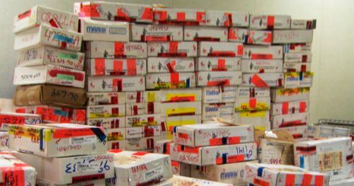 Stacks of untested rape kits