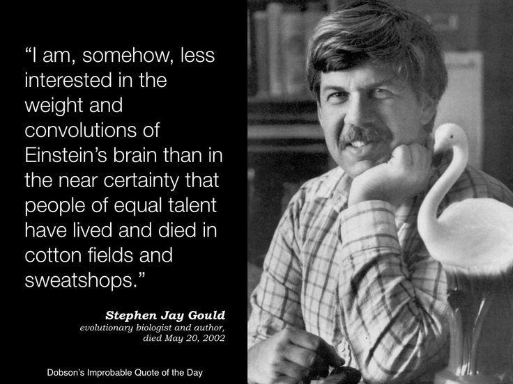 Stephen J Gould